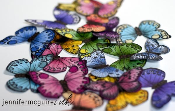 121709 Butterflies