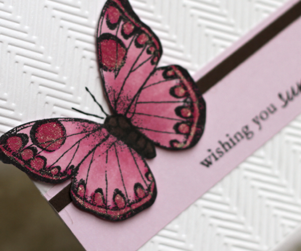 123109 Butterfly Cards 2
