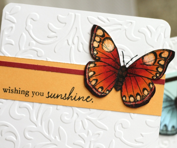 123109 Butterfly Cards 3